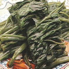 Stir-Fried Cabbage [1]